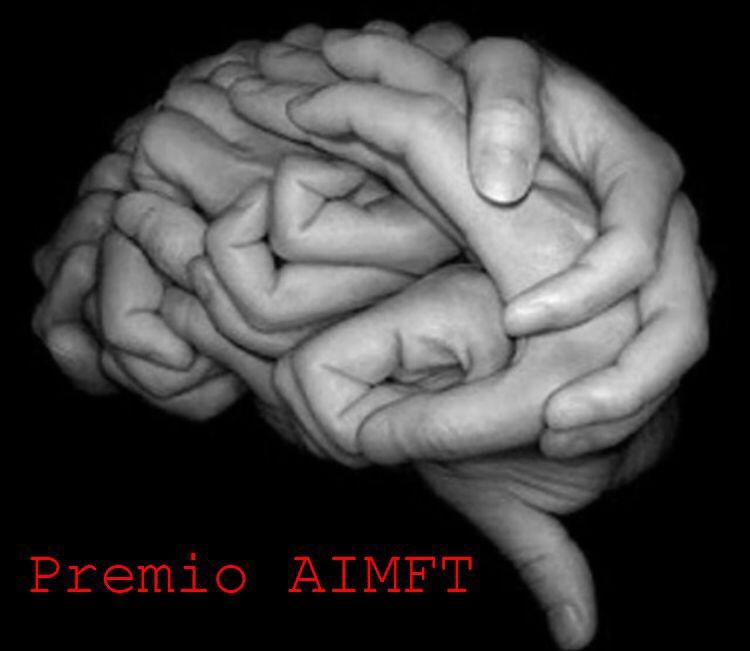 premio aimft