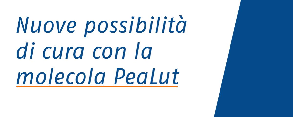 wp_molecola pealut